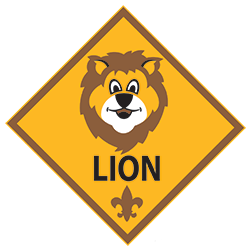 Advancement – Lion Electives